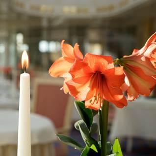 Kerze und Blume
