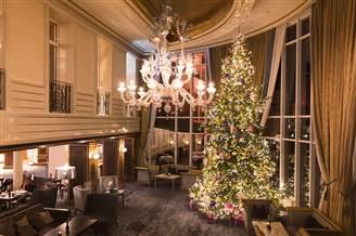 Christmas tree in the Sonnenhof